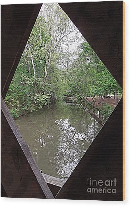 Wood Print featuring the photograph Peering Out by Renee Trenholm