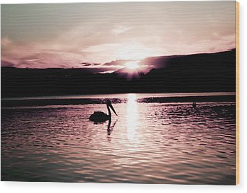 Wood Print featuring the photograph Pelican At Sunset. by Carole Hinding