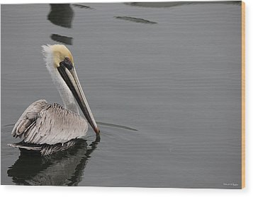 Pelican Beauty Wood Print by Deborah Hughes