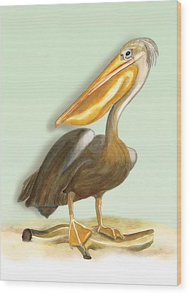 Wood Print featuring the painting Pelican Bill by Anne Beverley-Stamps