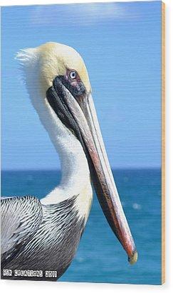 Pelican Wood Print by Fern Korn