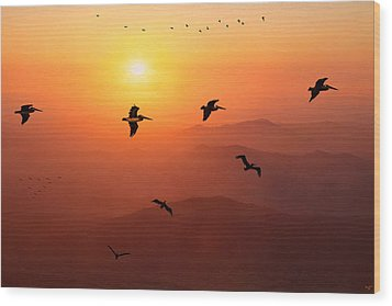 Wood Print featuring the photograph Pelican Migration by Chris Lord