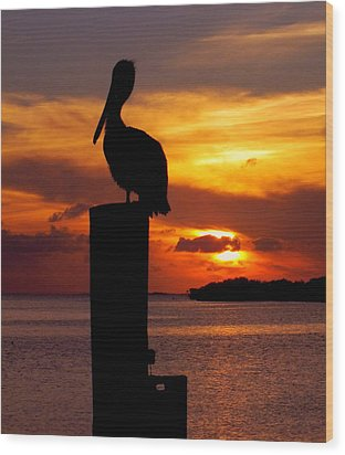 Pelican Sundown Wood Print by Karen Wiles