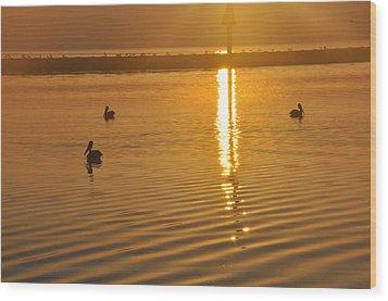 Pelicans And Sunrise Wood Print