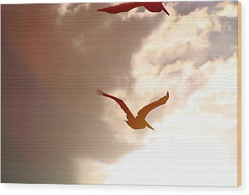 Pelicans At Sunset Wood Print by Lori Leigh