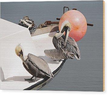 Pelicans Wood Print by Paulette Thomas