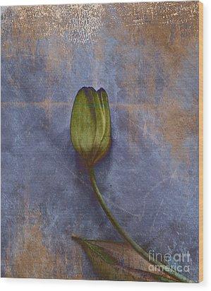 Penchant Naturel - 07at04b3 Wood Print by Variance Collections