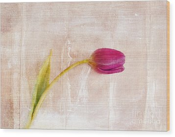 Penchant Naturel - 09c3t08 Wood Print by Variance Collections