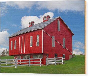 Pennsylvania Dutch Red Barn Wood Print by Brian Mollenkopf