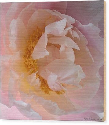 Wood Print featuring the photograph Peony Pink by Penny Hunt