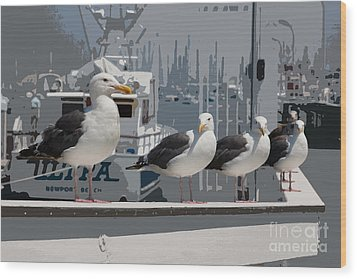 Perched Seagulls Wood Print by Sonny Marcyan