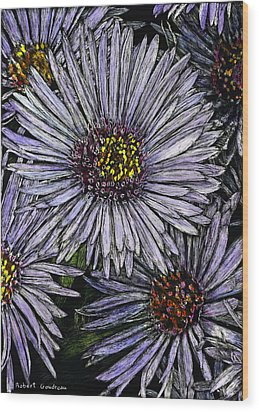 Perennial Asters Wood Print by Robert Goudreau