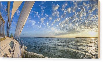 Perfect Evening Sailing On The Charleston Harbor Wood Print by Dustin K Ryan