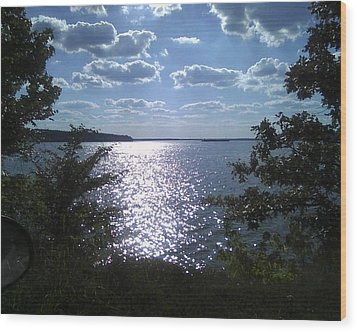 Perfect Pickwick Beauty Wood Print by Dorothy S Guinn