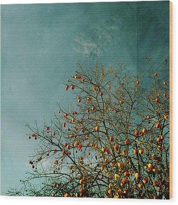 Persimmon B O U N T Y Wood Print by Paul Grand Image