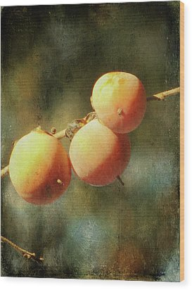 Persimmons Wood Print by Amy Tyler