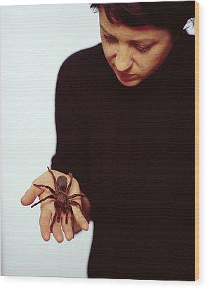 Pet Tarantula Wood Print by Lawrence Lawry