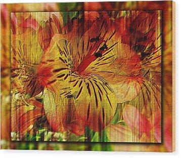 Petal Paradigm Wood Print by Tim Allen