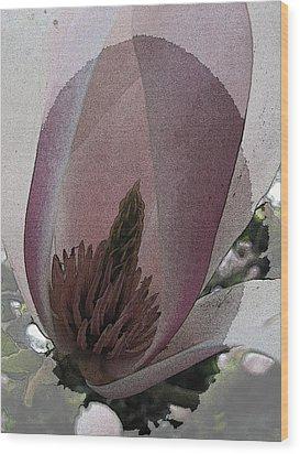 Petal Prose Wood Print by Tim Allen