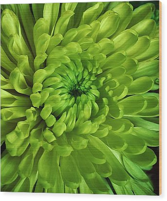 Petals Of Green Wood Print by Bruce Bley
