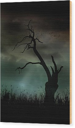 Petrified Wood Print by Richard Piper