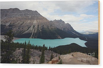 Wood Print featuring the photograph Peyto by Milena Boeva