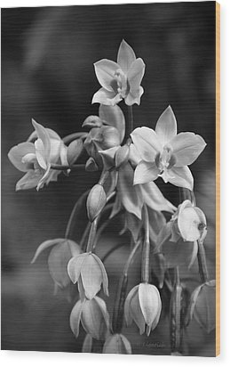 Wood Print featuring the photograph Philippine Orchids In Black And White by Kerri Ligatich
