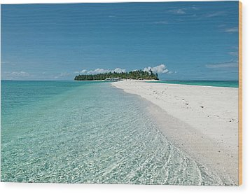 Philippines, Calangaman Island Wood Print by Photo by Karl Lundholm