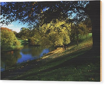Phoenix Park, Dublin, Co Dublin, Ireland Wood Print by The Irish Image Collection