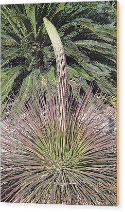 Phoenix Spire Wood Print by Robert Meyers-Lussier