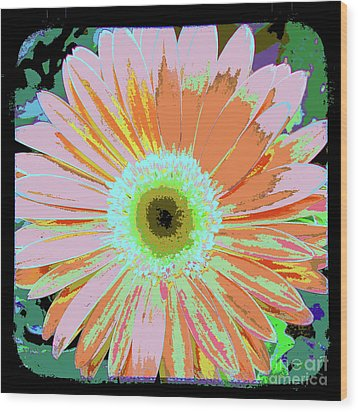 Photography Art Floral Wood Print by Ricki Mountain
