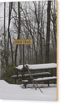 Picnic Table In Snow Wood Print by Will and Deni McIntyre