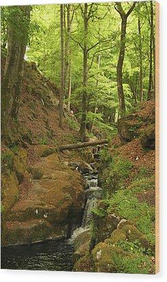 Picturesque Creek Wood Print