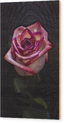 Picturesque Satin Rose Wood Print by Linda Tiepelman