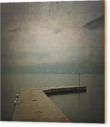 Pier With Seagulls Wood Print by Joana Kruse