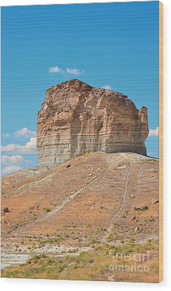 Pilot Butte Rock Formation II Wood Print by Donna Greene