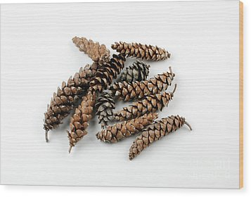Pine Cones Wood Print by Photo Researchers, Inc.