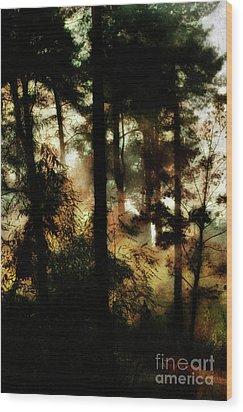 Pine Trees Wood Print by Dariusz Gudowicz