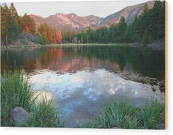 Pine Valley's Tranquility Wood Print