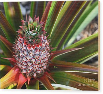 Wood Print featuring the photograph Pineapple by Denise Pohl