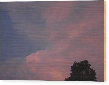 Pink And Blue Sky Wood Print by LeeAnn McLaneGoetz McLaneGoetzStudioLLCcom