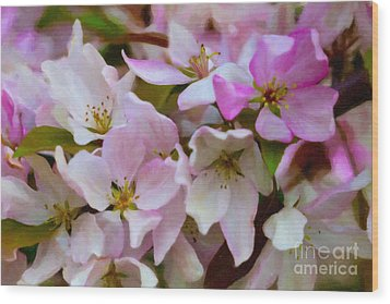 Pink And White Crabapple Blossoms Wood Print by Donna Munro