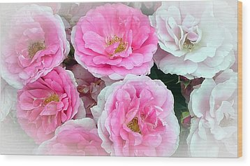 Pink And White Rose Melody Wood Print by Chantal PhotoPix