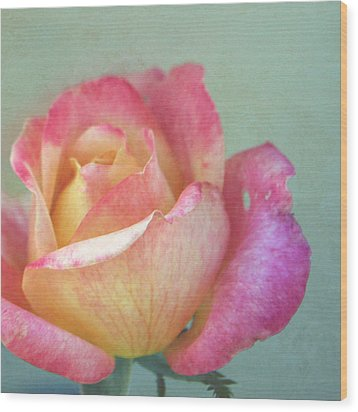 Wood Print featuring the photograph Pink And Yellow Rose On Robin's Egg Blue by Brooke T Ryan
