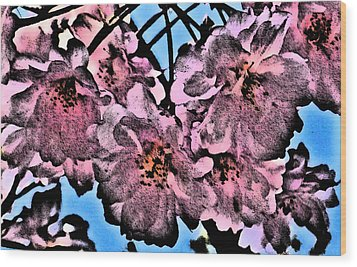 Pink Cherry - Black On Blue Wood Print by Jen White
