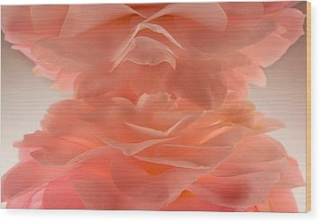 Pink Cloud Wood Print by Bobby Villapando