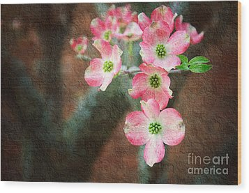 Pink Dogwood Cascade Wood Print by Andee Design