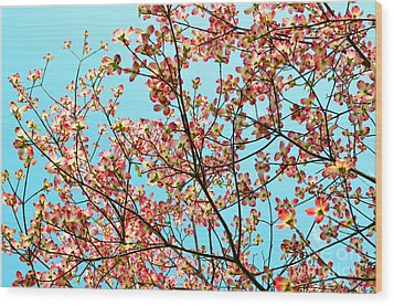 Pink Dogwood Sky Wood Print by Debbie Portwood