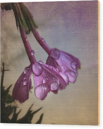 Wood Print featuring the photograph Pink Droplets by Deborah Smith