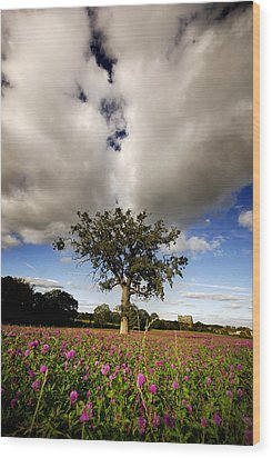 Wood Print featuring the photograph Pink Drops by John Chivers